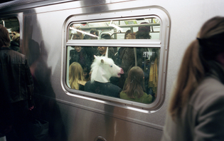 unicorn-on-train.jpg?format=1000w
