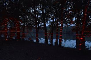 mies-van-der-rohe-farnsworth-house-iker-gil-luftwerk-geometry-of-light-red-lasers_dezeen_2364_col_8.jpg