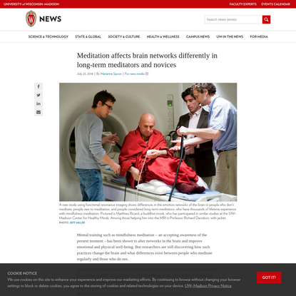 Meditation affects brain networks differently in long-term meditators and novices