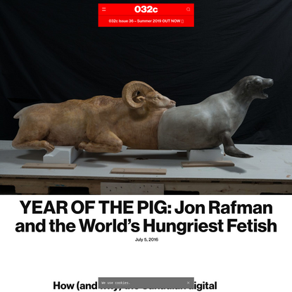YEAR OF THE PIG: Jon Rafman and the World's Hungriest Fetish - 032c