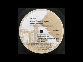 Amina Claudine Myers - Golden Lady In The Graham Cracker Window