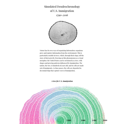 Simulated Dendrochronology of U.S. immigration