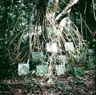 Robert Smithson, Yucatán Mirror Displacements (1-9)