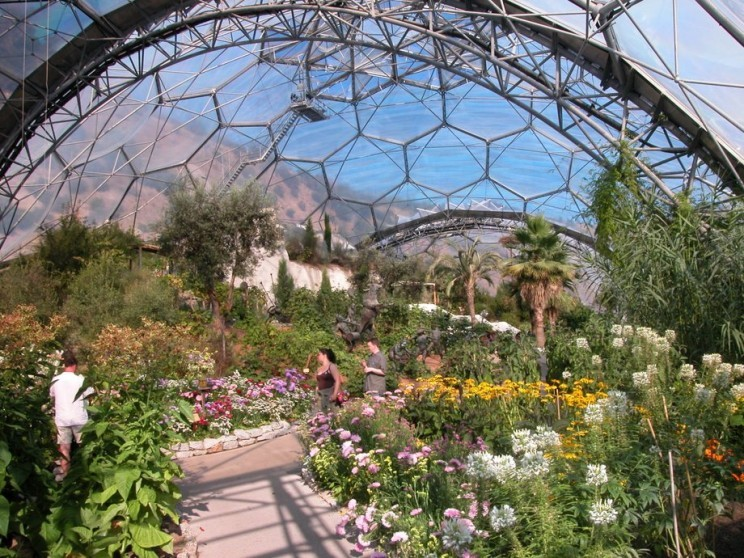 1137-eden-project-flowers-tourist-attractions_resize_md.jpg