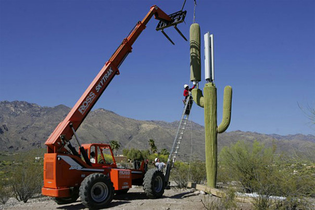 camouflage-cell-phone-towers-13.jpg