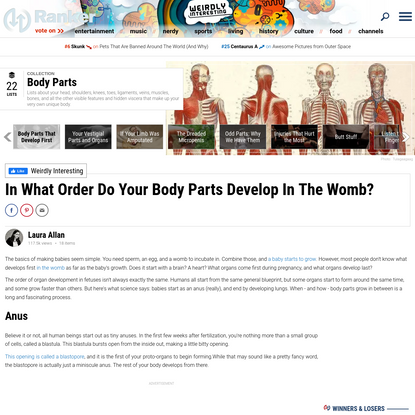 In What Order Do Your Body Parts Develop In The Womb?