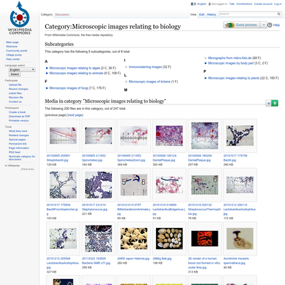 Category:Microscopic images relating to biology - Wikimedia Commons
