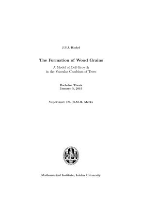 bsc-rinkel.pdf