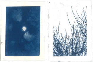 The moon on the night of my 23rd birthday party; The trees the morning i moved into my first home in a new city; cyanotype, 2014, Maddy Young