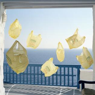 jakob_hunosoe_yellow_bags.jpg