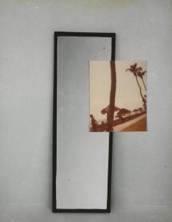 William Wegman, Window, 1979