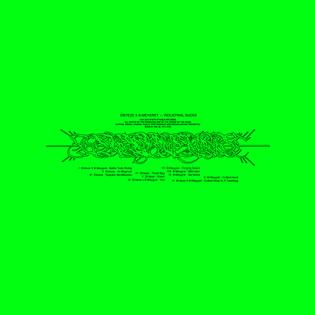 Digital Cover—Sïnteze X B-meygret_Industrial Sucks—Green