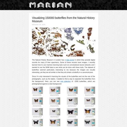 Visualizing 150000 butterflies from the Natural History Museum