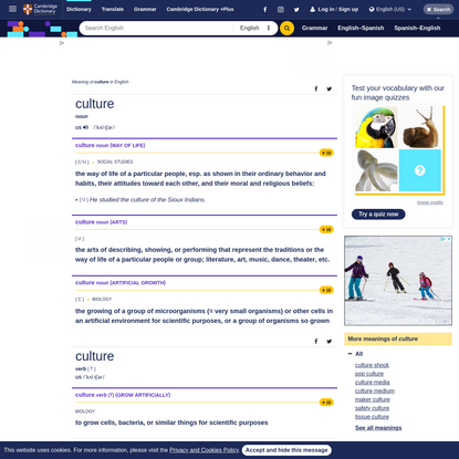 CULTURE | definition in the Cambridge English Dictionary