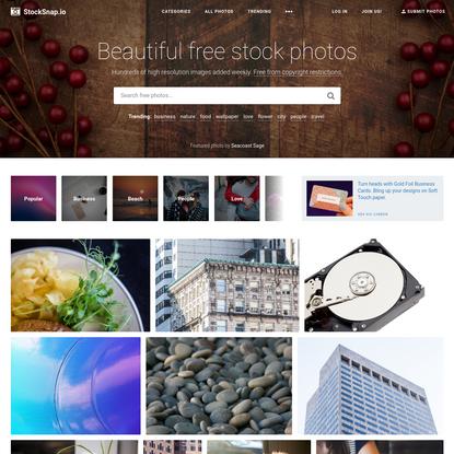 StockSnap.io - Beautiful Free Stock Photos (CC0)