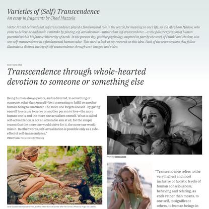 Varieties of (Self) Transcendence: An Essay in Fragments