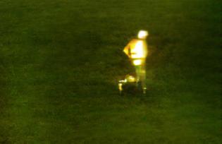 spade-coco-output-6.jpg