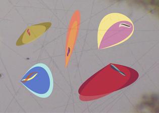datamicrobe-v2.jpg