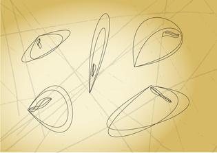 datamicrobe-v2-outlines.jpg