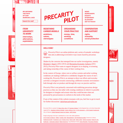 Precarity Pilot