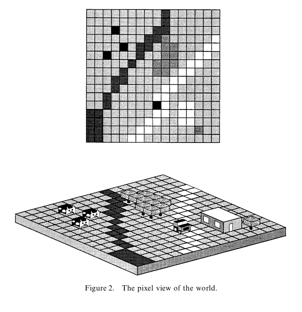The pixel view of the world