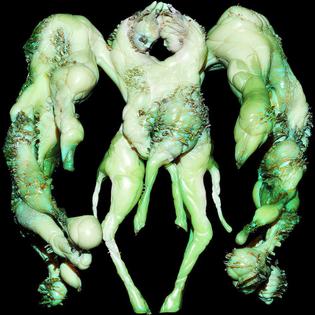 polycephaly.jpg