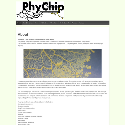 PhyChip | Growing Computers from Slime Mold