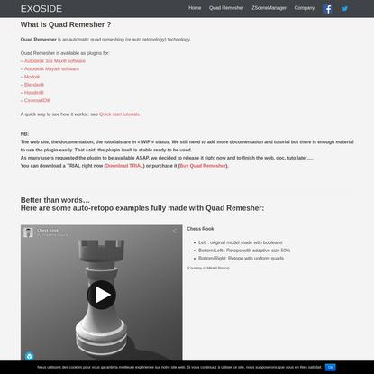 Quad Remesher - Auto Retopology - EXOSIDE -