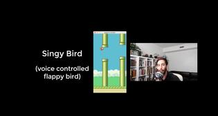 Singy Bird