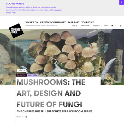 Mushrooms: The art, design and future of fungi