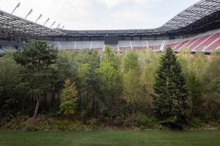 klaus-littmann-for-forest-the-unending-attraction-of-nature-wo-rthersee-stadium-klagenfurt-gerhard-maurer-7.jpg