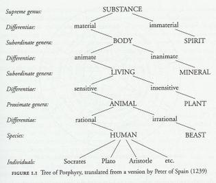 tree-of-porphyry-en.jpg
