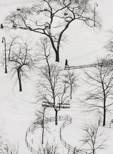André Kertész, Washington Square, Winter, 1954
