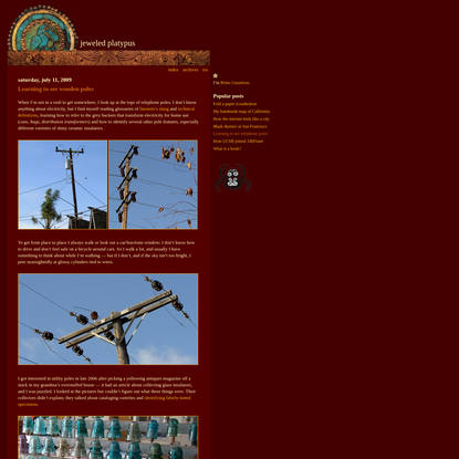 jeweled platypus · britta · Learning to see wooden poles