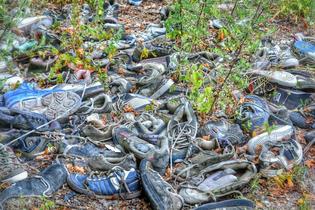 shoe-litter.jpg