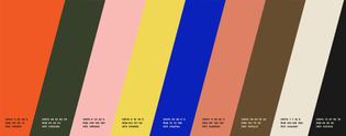 onward_color_palette.jpg