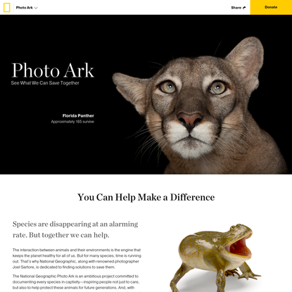 Photo Ark   National Geographic Society