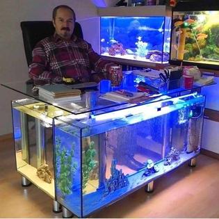 fish tank desk