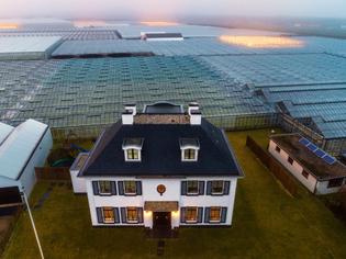 hunger-solution-greenhouse-farm.adapt.1900.1.jpg