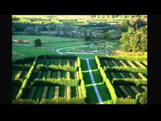 From landscape architecture to conservation agriculture   Thomas Woltz   TEDxCharlottesville