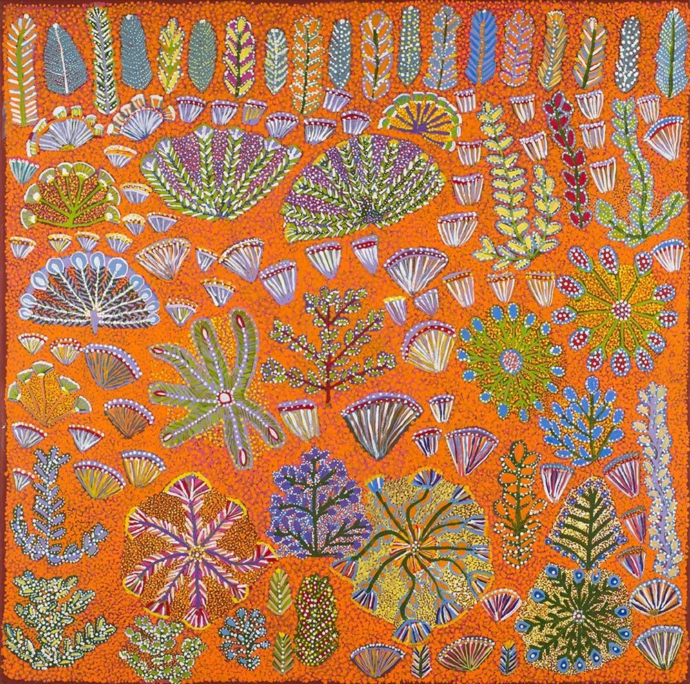Rosie Ngwarraye Ross, Bush Flowers and Bush Medicine Plants, 2015