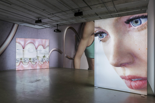 kate-cooper-rigged-2016-installation-view.jpg