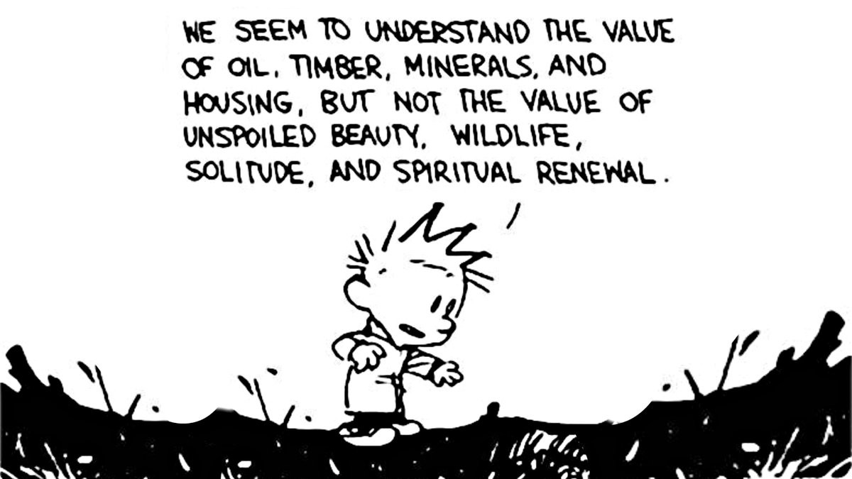 """Calvin and Hobbes: """"We seem to understand the value of oil, timber, minerals, and housing, but not the value of unspoiled beauty, wildlife, solitude, and spiritual renewal."""""""