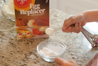 adding-egg-replacer-powder.jpg