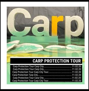 carp6.png