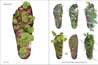 ex-formation_steppingonplants.jpg