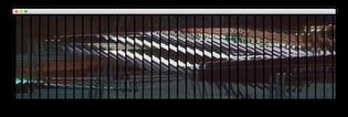 screen-shot-2020-03-03-at-9.51.53-pm.png