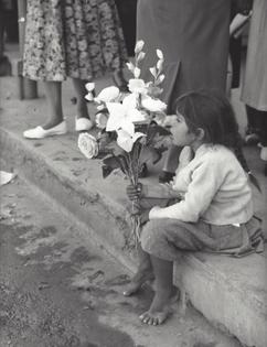 Kees Scherer- Italy, 1958-1963
