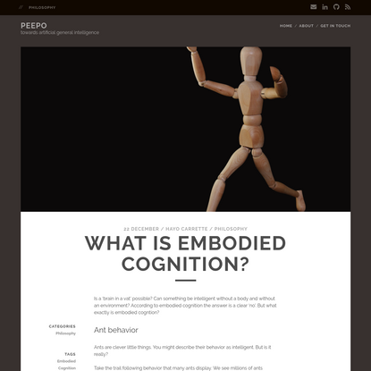 What is embodied cognition?
