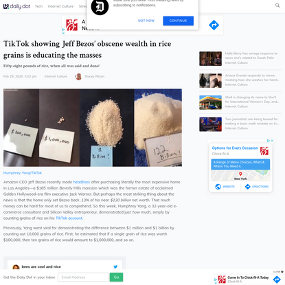 TikTok showing Jeff Bezos' obscene wealth in rice grains is educating the masses
